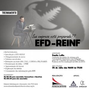 Palestra EFD - Reinf com Danilo Lollio